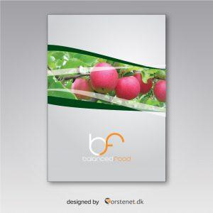 balanced-food-apples